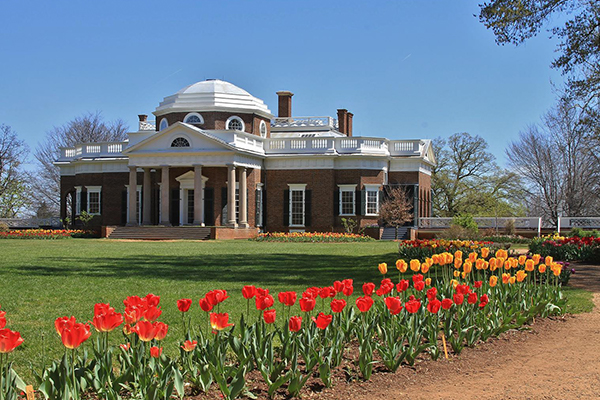 The West Lawn of Monticello in the spring with rows of tulips